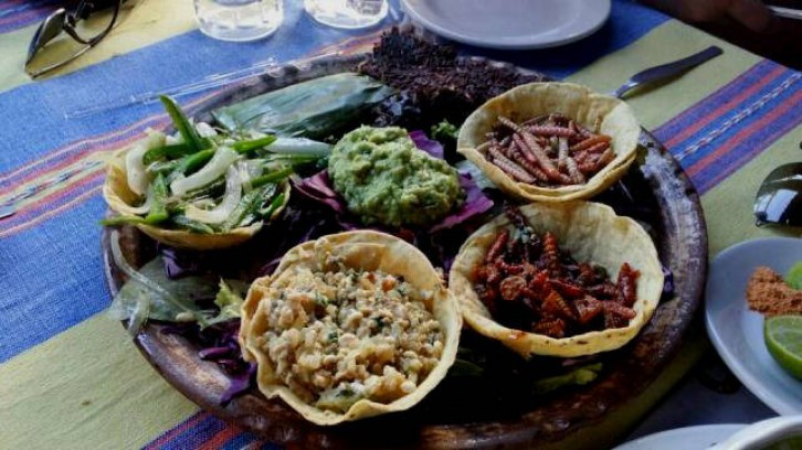 Workshop of Teotihuacan Flavors