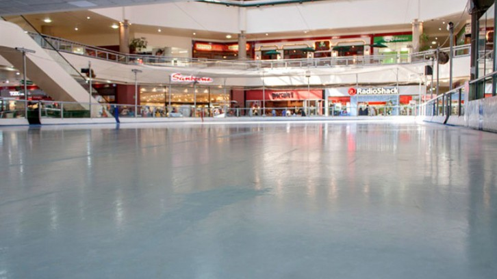 Pabellón Bosques Ice Rink